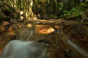 <br>Parc Naturel Régional des Volcans d'Auvergne