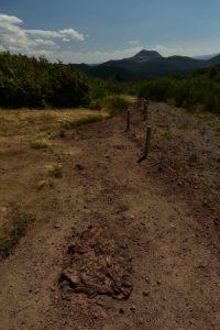 Le Puy de la Coquille<br> Parc Naturel Régional des Volcans d'Auvergne