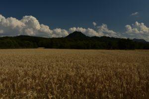 Le Puy de Jume<br>Parc Naturel Régional des Volcans d'Auvergne