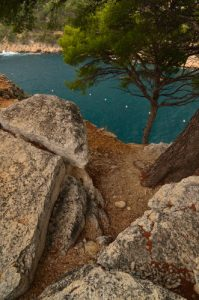 Calanque de Port Miou -  Parc National des Calanques
