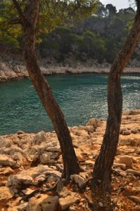 Calanques de Port-Pin - 