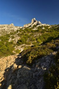 La Calanque de Callelongue<br>
