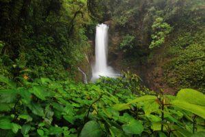 Cascade<br> Los jardines de la Catarata La Paz<br> Le Costa-Rica