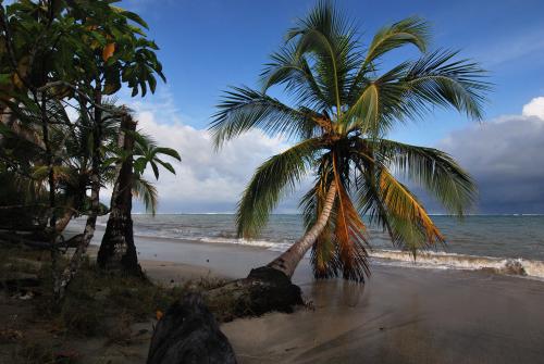 Le Canal de Beauregard<br> Parc Naturel Régional de La Martinique