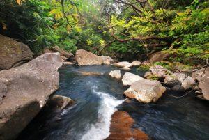 Cascade Catarata Cangreja<br> Parc du volcan Rincon de la Vieja<br> Costa-Rica