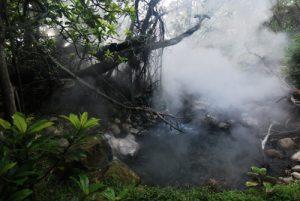 """Fumerolles volcaniques du sentier """"Sendero circular de Las Pailas"""" <br> Parc du volcan Rincon de la Vieja<br> Costa-Rica"""