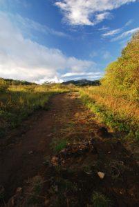 """Sentier """"Sendero circular Las Pailas""""<br> Parc du volcan Rincon de la Vieja<br> Costa-Rica"""