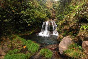 Cascade sur le sentier du cratère Rincon de la Vieja<br> Parc du volcan Rincon de la Vieja<br> Costa-Rica