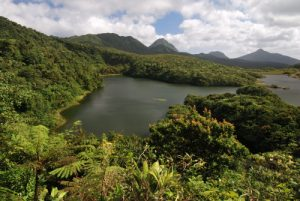 Lac de la forêt humide<br> Fresh Water Lake <br> Île de la Dominique (Dominica)