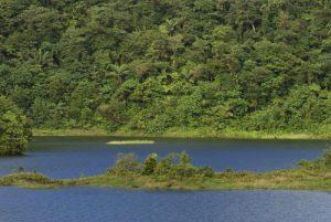 Lac de la forêt humide<br> Fresh Water Lake <br> Île de la Dominique (Dominica)