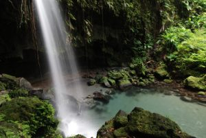 Cascade Emerald Pool<br> Île de la Dominique (Dominica)