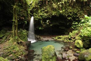 Cascade Emerald Pool<br>