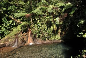 "Gorges ""Titou Gorge""<br> Village de Laudat<br> Île de la Dominique (Dominica)"