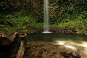 Cascades The Penrice (Spanny) Falls<br> Île de la Dominique (Dominica)