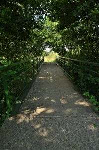 Espace Naturel Sensible du Marais de Cercanceaux