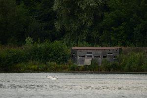 Observatoire aux oiseaux<br> Espace Naturel Sensible du Marais de Cercanceaux