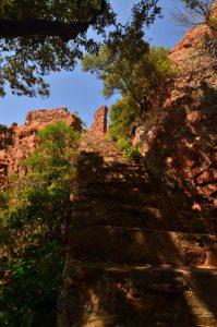 La Chapelle-Grotte de Sainte-Baume -  Réserve biologique de l'Esterel
