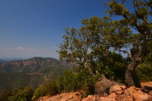Vue sur le Pic de l'Ours depuis le sommet du Pic du Cap Roux -  Réserve biologique de l'Esterel