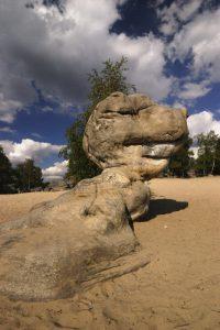 Les sables du cul du chien<br> Massif des 3 pignons<br> Forêt de Fontainebleau
