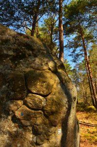 Site d'escalade du Diplodocus<br> Les 3 Pignons - Forêt de Fontainebleau
