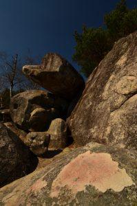 Les sables &amp; rochers du Cul du Chien<br> Les 3 Pignons - Forêt de Fontainebleau