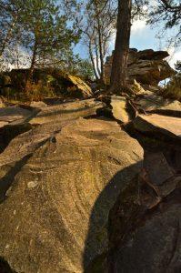 Le Rocher des Souris<br> Circuit des 25 bosses<br> Forêt domaniale des Trois Pignons
