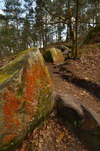 Le Rocher de Jean des Vignes<br> Circuit des 25 bosses<br> Forêt domaniale des Trois Pignons