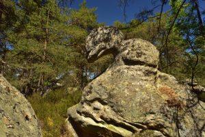 Rocher remarquable sur le circuit des 25 bosses<br> Forêt des 3 Pignons<br> Forêt de Fontainebleau