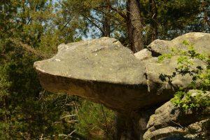 Rocher de la Tortue<br> Circuit des 25 bosses<br> Forêt domaniale des Trois Pignons