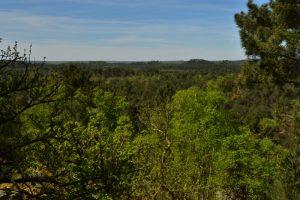 Point de vue de la Grande Montagne<br> Circuit des 25 bosses<br> Forêt domaniale des Trois Pignons