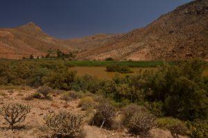 Barrage de Las Peñitas. Parque rural de Bétancuria. Île de Fuerteventura (Islas Canarias).