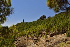 Chemin du Roque Nublo<br> Parque rural del Nublo<br> Île de Grande Canarie