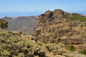 Point de vue du Pico de Las Nieves<br> Paysaje Protegido de Las Cumbres<br> Île de Grande Canarie