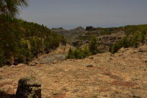 Chemin du Pico de Las Nieves<br> Paysaje Protegido de Las Cumbres<br> Île de Grande Canarie