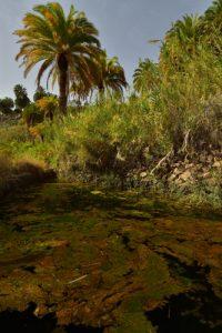 Le Barrage Presa de La Sorrueda<br> Île de Grande Canarie