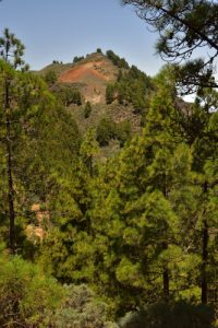 Le Roque del Pino et le Roque Grande près du Cratère Caldera de Los Marteles<br> Reserva Natural Especial de Los Marteles<br> Île de Grande Canarie