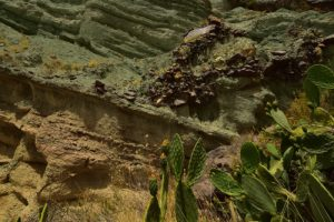 Los Azulejos<br> Parque Rural Del Nublo<br> Île de Grande Canarie