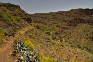 Les gorges de Guayadeque à Cuevas Bermejas<br> Monumento Natural de Barranco de Guayadeque<br> Île de Grande Canarie