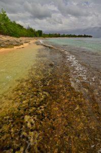 Anse du Souffleur à Port-Louis -  Grande-Terre / Guadeloupe