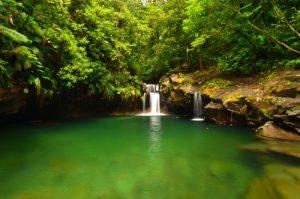 Bassin Paradise -  Parc national de la Guadeloupe -  Basse-Terre / Guadeloupe