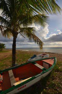 Barque de l'Anse Caraïbe à Pointe-Noire -  Basse-Terre / Guadeloupe