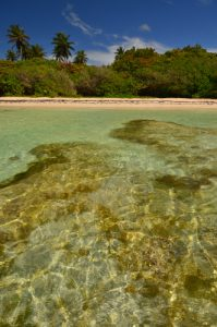 La Plage du Bois-Jolan à Trou à Cao-  Guadeloupe