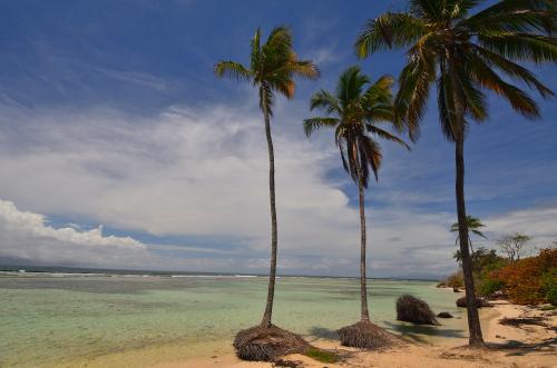 Le Diamant<br> Île de la Martinique