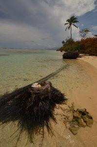 La Plage du Bois-Jolan -  Guadeloupe