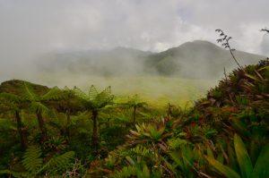 La Soufrière -  Basse-Terre / Guadeloupe