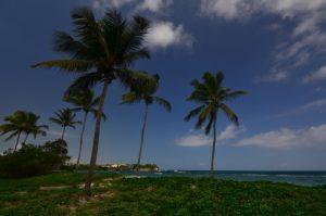 La Plage de Saint-Felix -  Grande-Terre / Guadeloupe