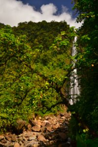 La seconde Chute du Carbet -  Parc national de la Guadeloupe -  Basse-Terre / Guadeloupe