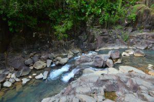 Rivière Grande à la Cascade Saut d'Acomat -  Basse-Terre / Guadeloupe