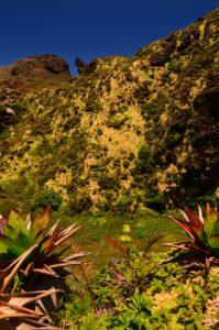 Gouffre Dupuy au sommet de la Soufrière -  Basse-Terre / Guadeloupe