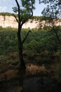 Cascade de Tuf de Baume-Les Messieurs<br> Parc régional du haut Jura